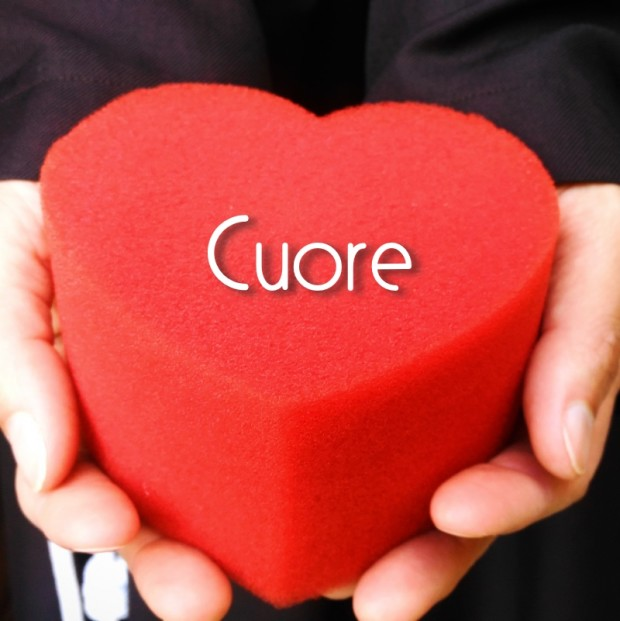 cuore_inst